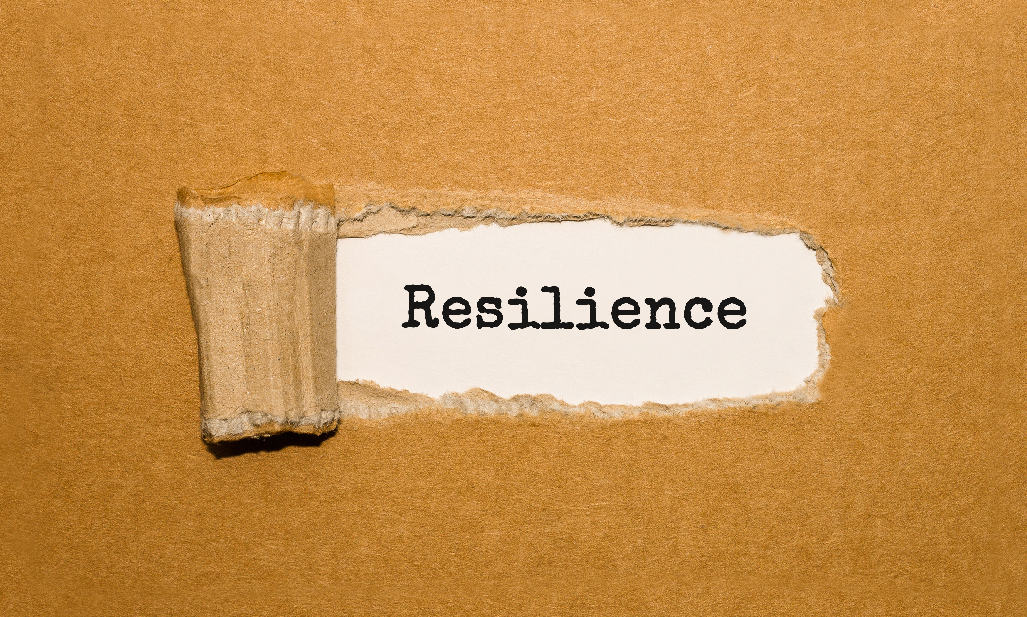 COVID-19: Resilience & Innovation Beats Bankruptcy