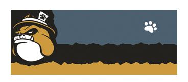 BulldogReporter-logo1