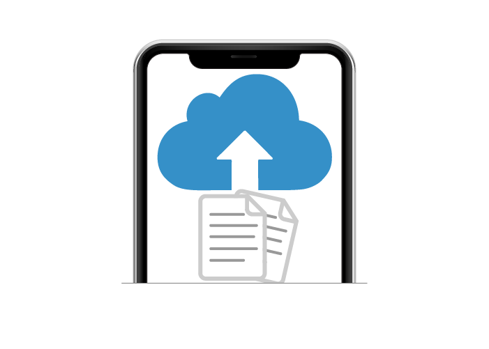SHARE HOLDING STATEMENTS AND OTHER DOCUMENTS